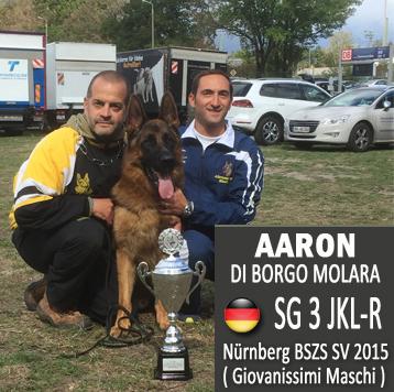 aaron-news-sv