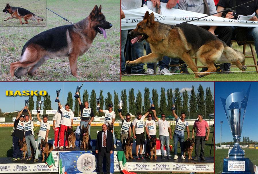basko-della-real-favorita-auslese-2015