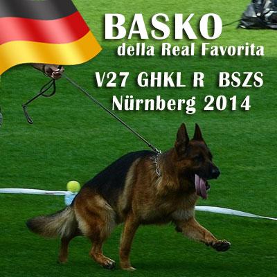 basko-della-real-favorita-nurnberg