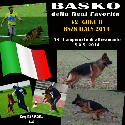 imm-basko-camp-sas-2014