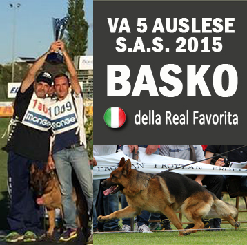 basko-VA